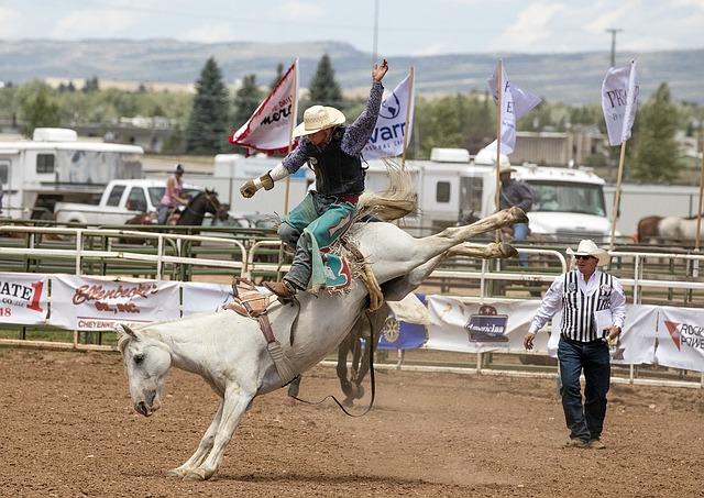kovboj na koni při rodeu