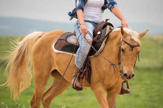 žena jedoucí na koni na planinách